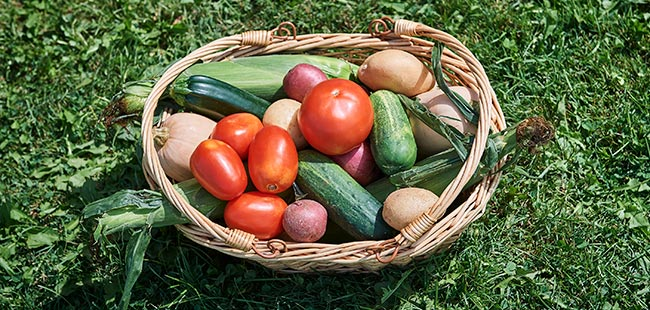 basket with tomatoes, cucumbers, and potatoes