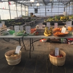 Greenhouse fruits and vegetables