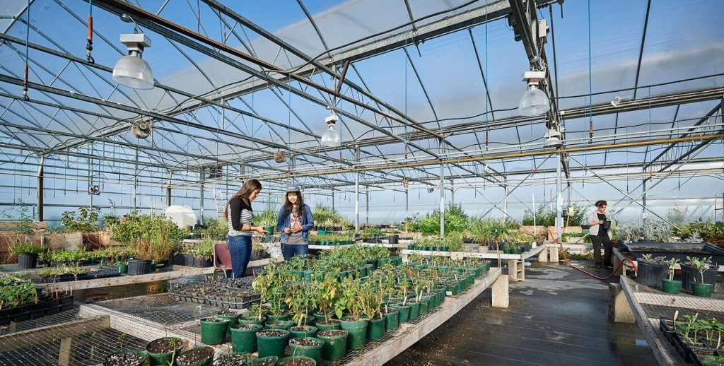 people standing inside of a green house surrounded by plants